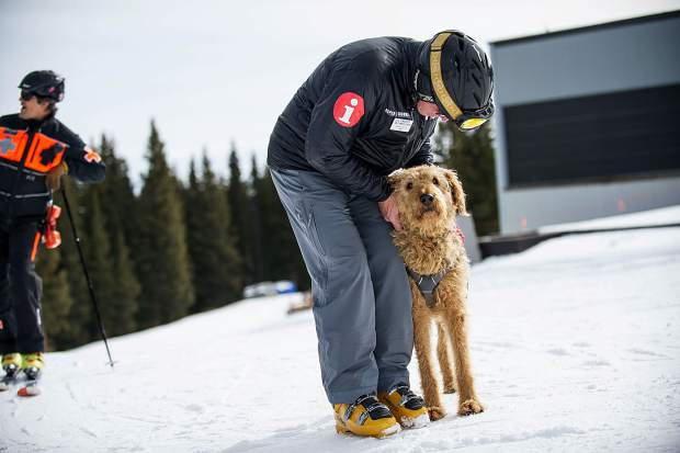 Zoot the Aspen Ski Patrol dog gets some love from Stephen Smith on opening day this Thursday.