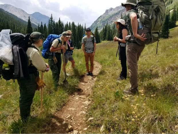 Solving Conundrum: U S  Forest Service efforts to wipe up
