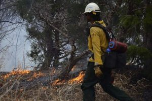 Forest Service gives timeline for prescribed burn near Carbondale this week