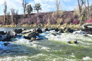 Robinson Ditch section on Roaring Fork River gets new opening for rafts, boats