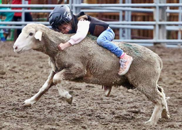 A child takes part in the popular mutton busting competition during the Snowmass Rodeo on Wednesday, Aug. 7, 2019.