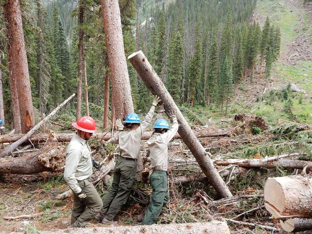 Tyler Lee, Veronica Reardon and Jerry Olp, left to right. clear a sawed tree trunk off the South Fork Trail on Friday. An avalanche deposited scores of trees on the trail.