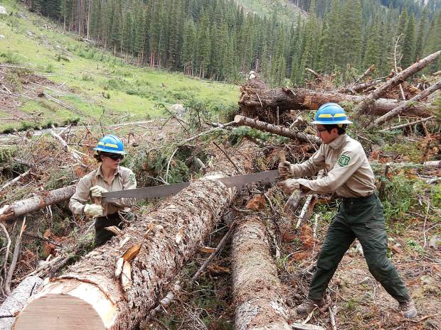 Veronica Reardon, left, and Jerry Olp, wilderness rangers with the Aspen-Sopris Ranger District, use a two-person crosscut saw to cut through a log felled by an avalanche Friday on the South Fork Trail.